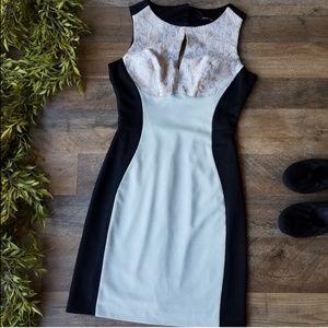 Ark & Co • Hourglass Open Back Dress